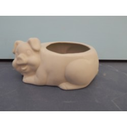 pig-container
