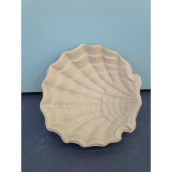 shell-plate-striped