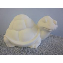 turtle-smiling
