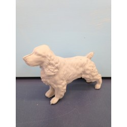 wire-haired-terrier