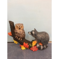 owl-and-raccoon-on-tree