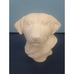 dog-lab-bust